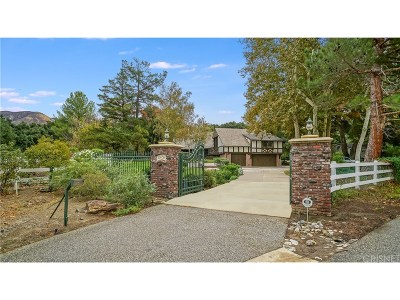 Canyon Country Single Family Home For Sale: 15656 Iron Canyon Road