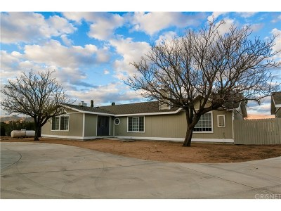 Palmdale Single Family Home For Sale: 32687 Angeles Forest Highway