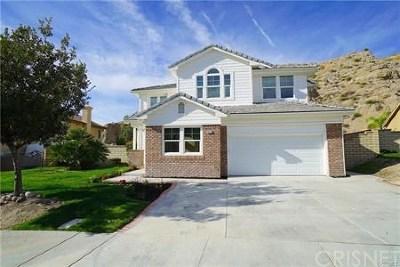 Canyon Country Single Family Home For Sale: 29717 Shenandoah Lane
