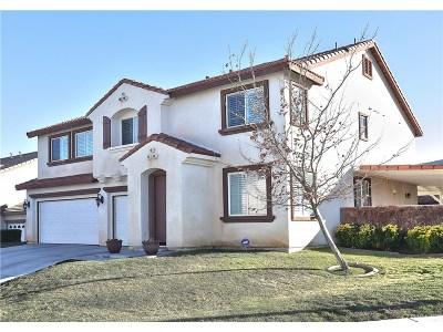 Lancaster Single Family Home For Sale: 7554 Ridge View Drive