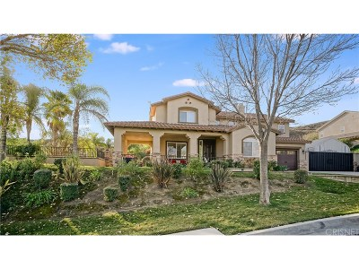 Castaic Single Family Home For Sale: 30036 Sagecrest Way