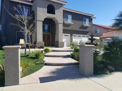 Palmdale Single Family Home For Sale: 41864 Cabo Court