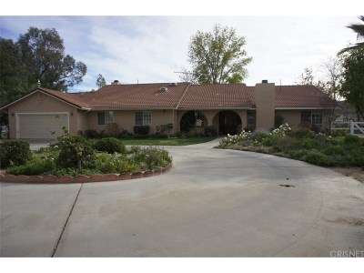 Castaic Single Family Home For Sale: 30435 Remington Road