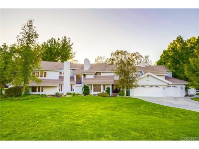 Canyon Country Single Family Home For Sale: 15508 Saddleback Road