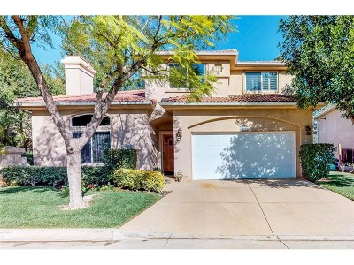 Sylmar Single Family Home For Sale: 13918 Mountain View Place