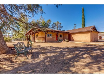 Acton Single Family Home For Sale: 32809 Crown Valley Road