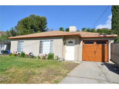 Canyon Country Single Family Home For Sale: 16823 Forrest Street