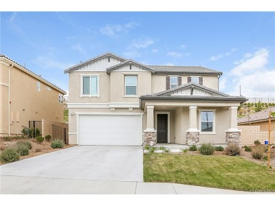 Saugus Single Family Home For Sale: 19619 Griffith Drive