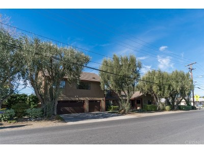 Newhall Single Family Home For Sale: 23408 Cherry Street
