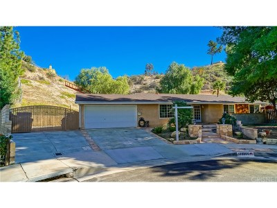 Canyon Country Single Family Home For Sale: 18800 Darter Drive