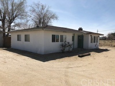 Lancaster Single Family Home For Sale: 43364 147th Street East