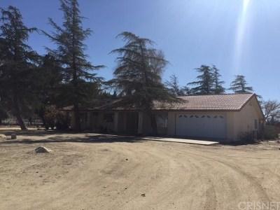 Lancaster Single Family Home For Sale: 5050 East Avenue K6