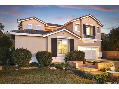 Saugus Single Family Home For Sale: 28434 Horseshoe Circle