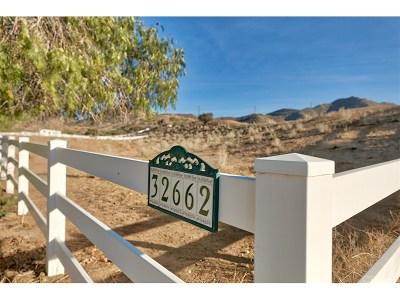 Acton Single Family Home For Sale: 32662 Calle Del Roja