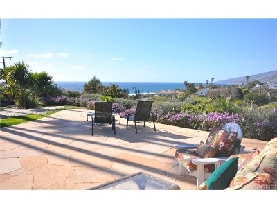 Malibu Single Family Home For Sale: 29821 Baden Place