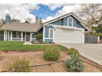 Saugus Single Family Home For Sale: 22329 Cypress Place