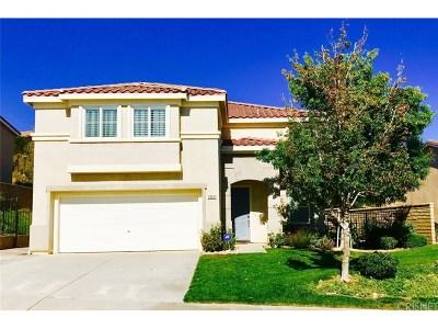 Castaic Single Family Home For Sale: 28251 Alton Way