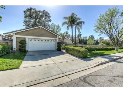 Valencia Single Family Home For Sale: 25775 Salceda Road