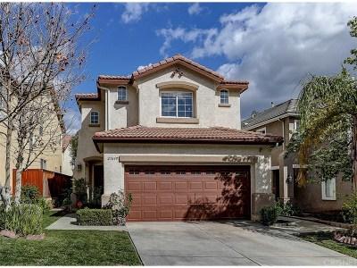 Castaic Single Family Home For Sale: 27649 Elkwood Lane