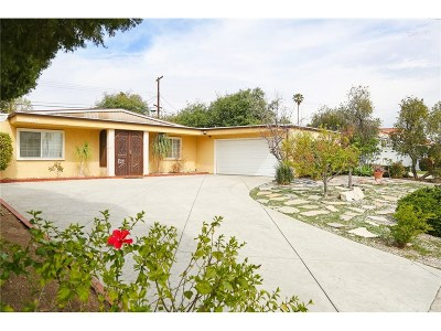 Chatsworth Single Family Home For Sale: 20409 Payeras Street
