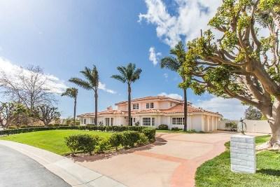 Camarillo Single Family Home For Sale: 3197 Calle De Debesa