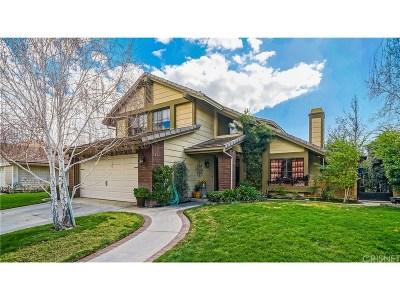 Valencia Single Family Home For Sale: 23616 Mesa Court