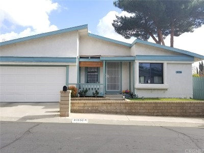 Castaic Single Family Home For Sale: 31936 Calcite Court