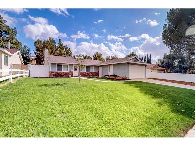 Canyon Country Single Family Home For Sale: 29510 Abelia Road