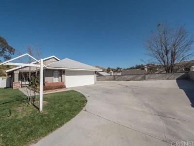 Saugus Single Family Home For Sale: 22725 Boxwood Lane
