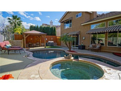 Canyon Country Single Family Home For Sale: 29510 Alyssum Lane
