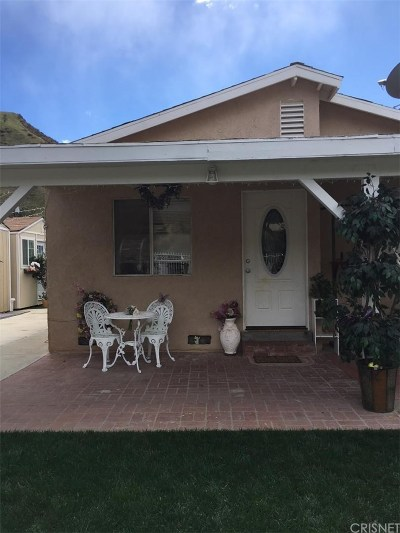 Castaic Single Family Home For Sale: 30632 San Martinez Road