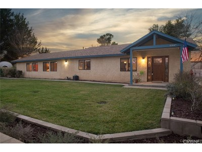 Palmdale Single Family Home For Sale: 41447 25th Street West