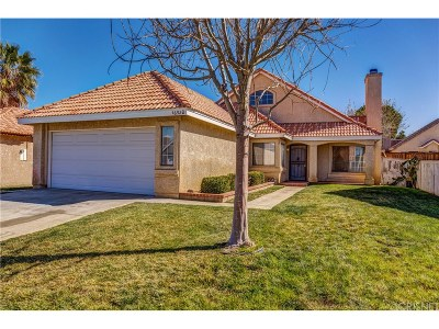 Palmdale Single Family Home For Sale: 36920 Doheny Lane