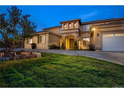 Palmdale Single Family Home For Sale: 40942 Oakgrove Court