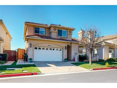 Sylmar Single Family Home For Sale: 13970 Mountain View Place