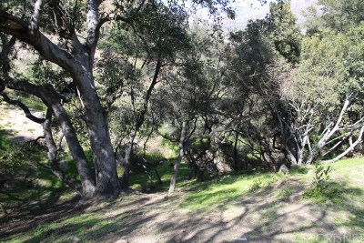 Tujunga Residential Lots & Land For Sale: 9667 Hillhaven Avenue