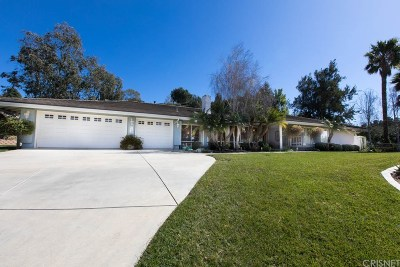 Camarillo Single Family Home For Sale: 968 Garrido Drive