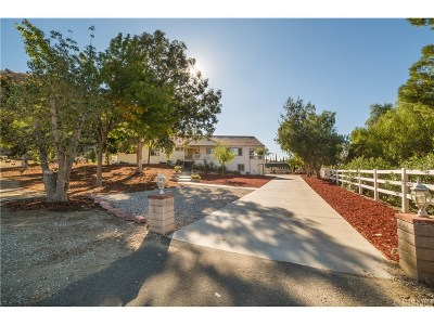 Saugus Single Family Home For Sale: 30018 Primrose Drive