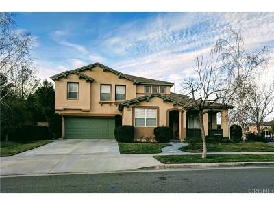 Saugus Single Family Home For Sale: 28899 Rock Canyon Drive