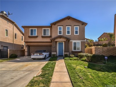 Canyon Country Single Family Home For Sale: 27212 Scotch Pine Place