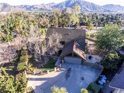 Camarillo Single Family Home For Sale: 5434 Willow View Drive