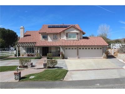 Acton Single Family Home For Sale: 32755 Dorama Avenue