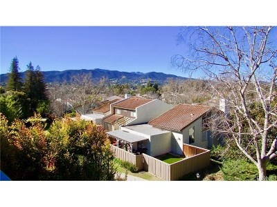 Thousand Oaks Single Family Home For Sale: 883 Woodlawn Drive