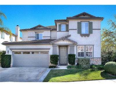 Saugus Single Family Home For Sale: 22158 Altair Lane