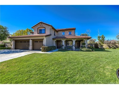 Castaic Single Family Home For Sale: 30342 Ridgeway Court