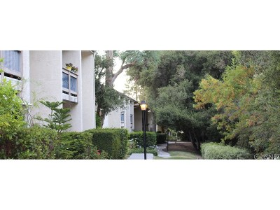 Calabasas Condo/Townhouse For Sale: 4616 Park Granada #69