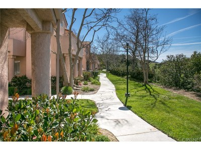 Newhall Condo/Townhouse For Sale: 21226 Trumpet Drive #203