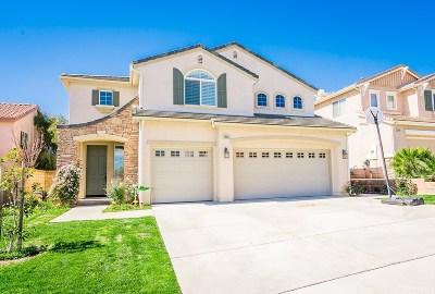 Valencia Single Family Home For Sale: 29019 Old Adobe Lane