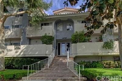 Sherman Oaks Rental For Rent: 14727 Magnolia Boulevard #106