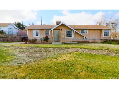 Palmdale Single Family Home For Sale: 38637 Yucca Tree Street